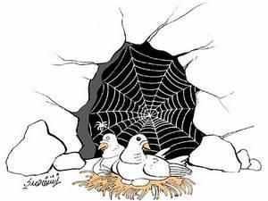 قصة العنكبوت والحمامتين في الغار